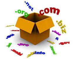 Domain Registeration Service